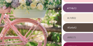 boutique website template colors