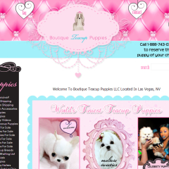 Boutique Teacup Puppy Boutique Re-design